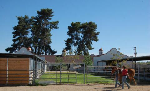 CAC Equine Center